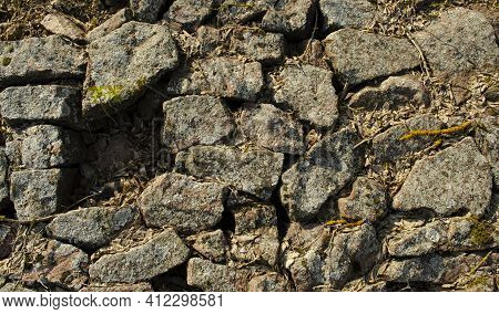 Cobblestone With Grass Texture Stone Path Road Pathway Background Of Paving Texture Old. Broken Pavi