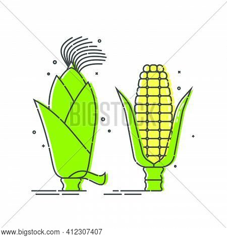 Golden Corn On White Background. Untreated Organic Food. Healthful Product. Young Yellow Ear Of Maiz