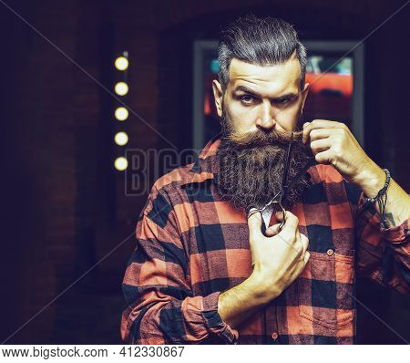 Handsome Bearded Man Hipster With Long Beard. Bearded Man, Bearded Male. Portrait Of Stylish Man Bea