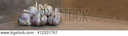 Baner Garlic, Ripe Garlic On A Wooden Table. Autumn Harvest Of Garlic.