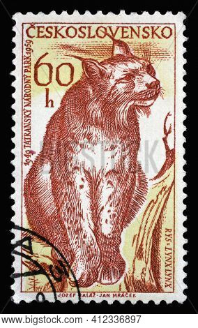 ZAGREB, CROATIA - SEPTEMBER 18, 2014: Stamp printed in Czechoslovakia shows Eurasian Lynx (Lynx lynx), circa 1959