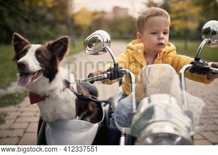 close-up of a cute little caucasian boy driving a dog in sidecar of electrical toy motorcycle