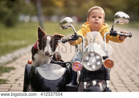 cropped image of caucasian little boy  driving dog in sidecar of a motorcycle replica outdoor in a park