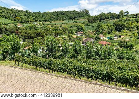 Village Around Vineyards