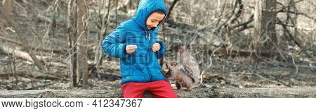 Caucasian Boy Feeding Grey Squirrel In Park Outdoors. Adorable Little Kid Giving Food Nuts To Wild A