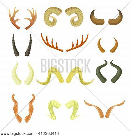 Various Horns Set. Pairs Of Antlers, Ram, Reindeer, Moose, Cow, Deer, Antelope, Stag Horny Parts Iso