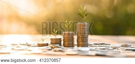 Growing Money, Business Finance And Saving Money Investment , Money Coin Stack Growing Graph, Plant