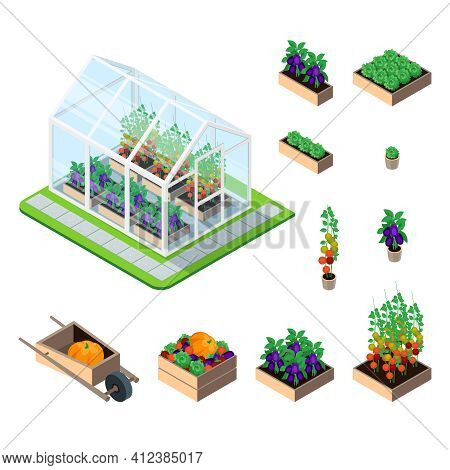 Greenhouse Isometric Set With Plants And Garden Vegetables Isolated Elements Vector Illustration