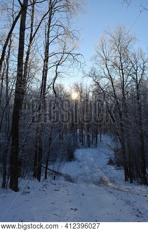 Landscape With Road In Winter Forest. Sunset Sun Behind The Trees.