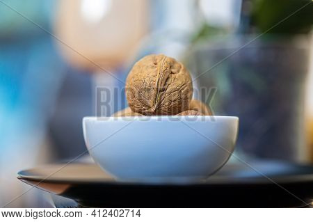 A Few Whole Walnuts In A Round-shaped Brown Shell Lie In A Small White Plate On Black Plate On A Blu