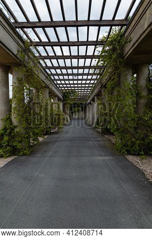 Wroclaw, Poland - May 13 2020: Long Tunnel With Pergola With Ivy And Bushes