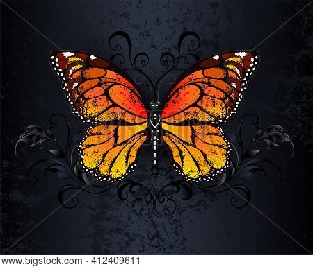 Orange, Realistic, Detailed Monarch Butterfly On Black, Textured, Gothic Background. Monarch Butterf