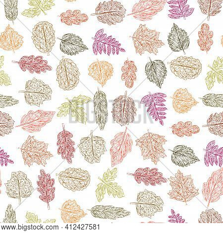 Seamless Pattern Of Doodles Colorful Leaves Of Various Deciduous Trees
