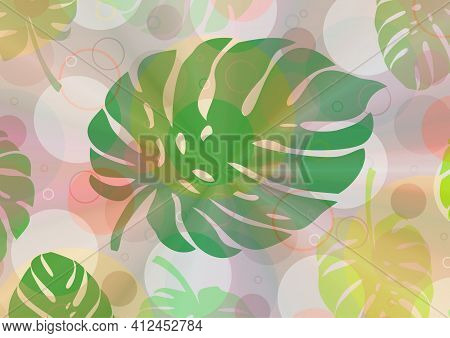 Background With Colorful Circles And Leaves Of The Plant Called Monstera As A Base For Designing You