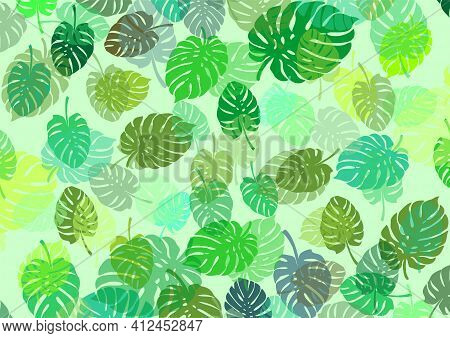 Green Seamless Background With Leaves Of The Plant Called Monstera As A Base For Designing Your Own