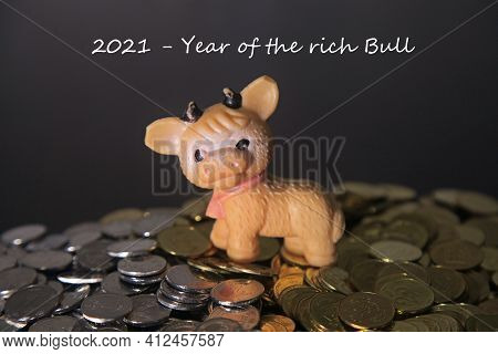 New Year 2021. Year Of The Bull To Eastern Calendar. Young Bull (goby Or Bull-calf) Against The Back