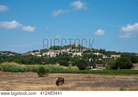 Summer Landscape With View On Ancient Perched  Mediterranean Village Grimaud With Ruin Of Old Castle