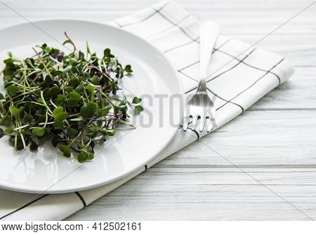 Micro Greens In A Plate On A White Background, Micro Green, Healthy Food Concept