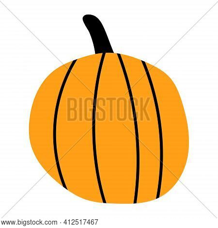 Vector Pumpkin. Hand Drawn Illustration. Autumn Collection.