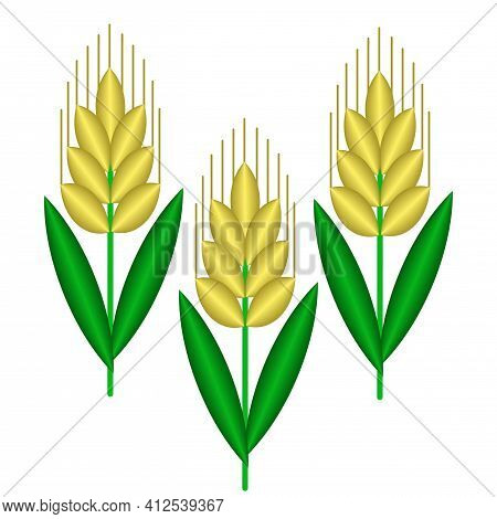 Three Vector Cartoon 3d Spikelets Isolated On White Background. Vector Geometric Logo Of Wheat, Rye