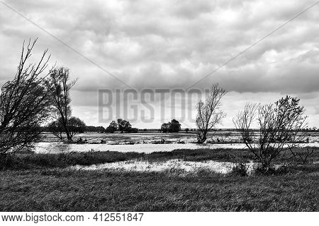 Backwaters At The Mouth Of The River Warta In Poland, Monochrome