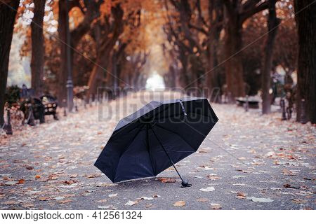 Autumn In City Park With Black Umbrella Left Opened On A Long Alley With Rows Of Trees In Fall Seaso