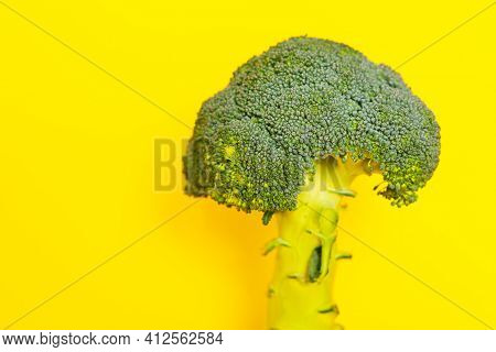 Broccoli On Yellow Background . Healthy Vegetable For Salad