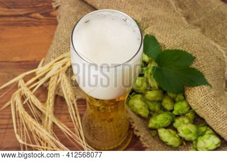 Beer Glass With Lager Beer Among The Hop Cones On A Sackcloth And Barley Ears On An Old Rustic Table