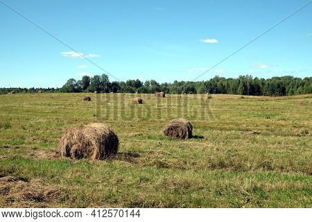 Beautiful Rural Landscape With Long Summer Field At The Edge Of The Forest With Many Rolled Dry Hay