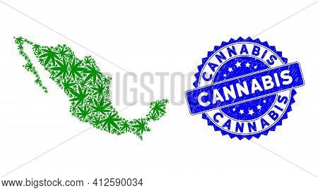 Mexico Mosaic Map Created Of Cannabis Elements, And Cannabis Scratched Seal Stamp. Vector Cannabis S