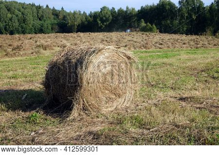 Rural Landscape With Summer Field With Rolled Haystack Close-up On Front And Mowed Field On The Back