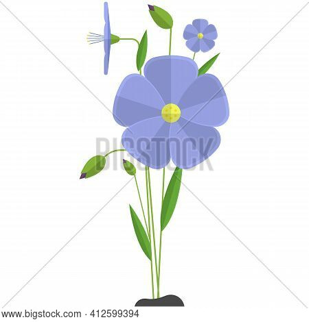 Flax Flower Vector Linen Plant Illustration Icon