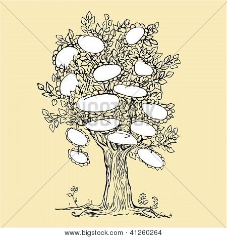 Family Tree Design With Empty Frames For Text - Sketchy Drawing Picture.