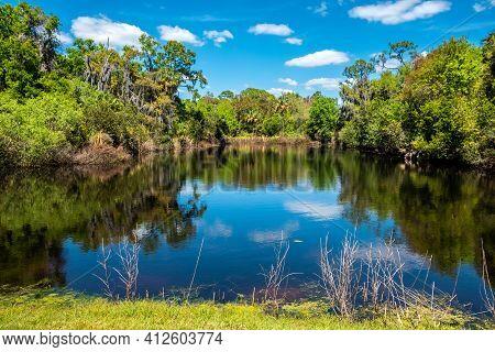 Natural Wetlands Pond In Conservation Area