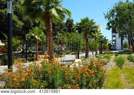 FULLERTON CALIFORNIA - 22 MAY 2020: The beautifully landscaped Quad area of the campus of California State University Fullerton, CSUF.
