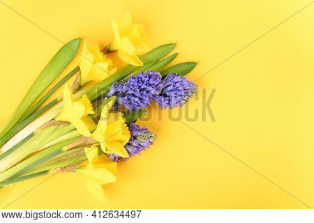 Spring Flowers On A Yellow Background, Close Up.