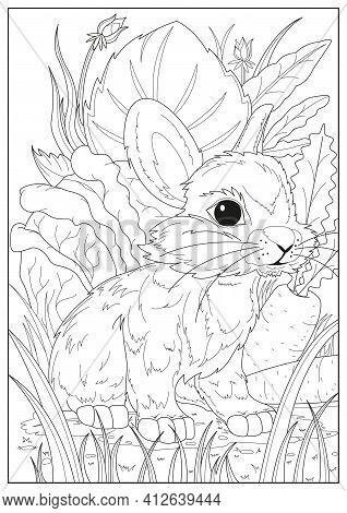 Coloring Pages For Childrens, Decorative Line Art Vector Rabbit Illustration Design. Wild Nature Ani