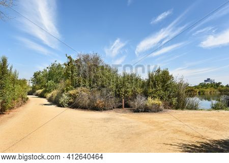 Intersection of the Fledgling Loop Trail and the South Loop Trail at Pond A in the San Joaquin Marsh Reserve, Irvine, CA.