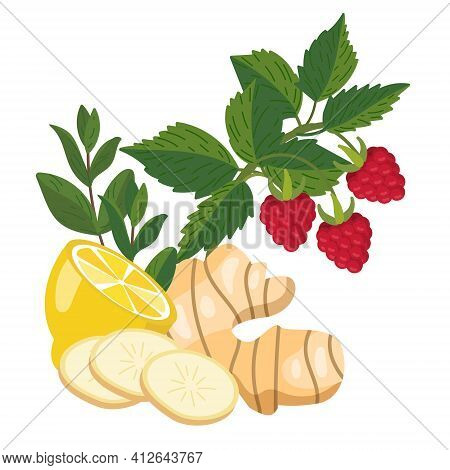 Lemon, Ginger, Mint, Raspberry. Natural Remedies And Ingredients For Home Treatments For Colds, Flu,