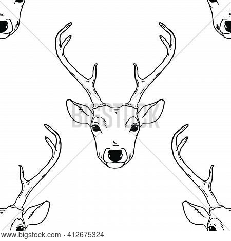 Monochrome Seamless Pattern With Deer Heads. Vector Nature Wildlife Animal Background In Black And W