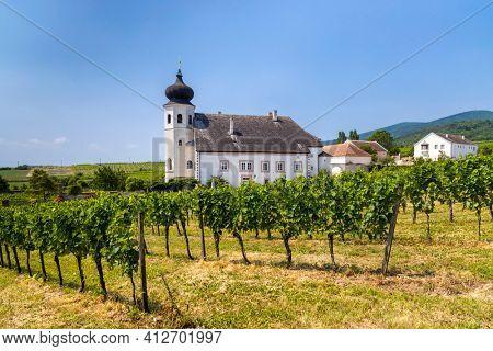Monastery winery Thallern near Gumpoldskirchen, Lower Austria, Austria