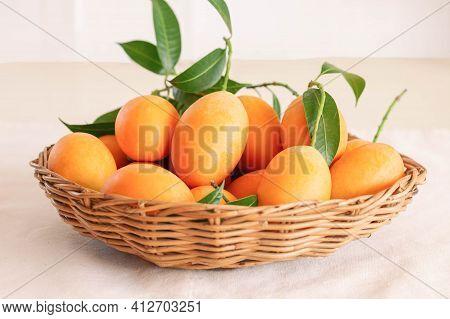 Big Size Fresh Ripe Organic Sweet Yellow Marian Plum Or Plum Mango In Wood Basket On Table. Tropical