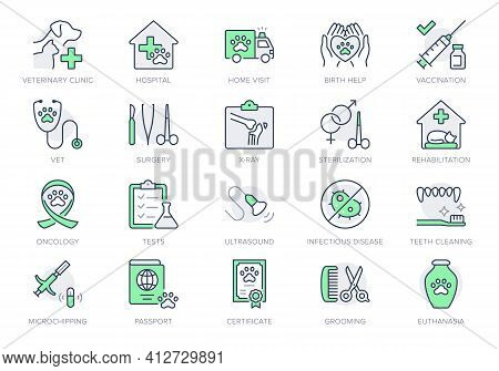 Veterinary Line Icons. Vector Illustration Include Icon - Stethoscope, Grooming, , Xray, Ultrasound,