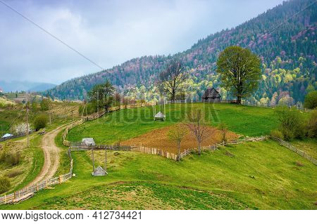 Rural Landscape Of Carpathian Mountains. Fields And Trees On Rolling Hills. Ukrainian Village In Cou