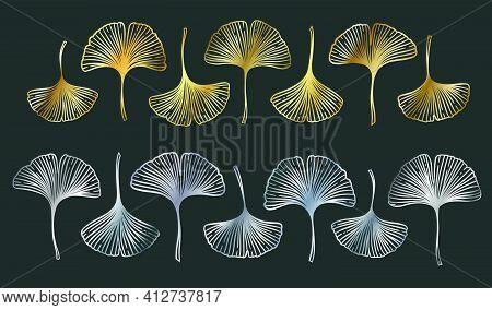 Ginkgo Or Gingko Biloba Golden And Silver Leaves Set. Nature Botanical Metal Vector Illustration, De