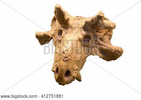 A Cast Of The Skull Of The Herbivorous Dinocephalus Estemmenosuchus (latin Estemmenosuchus Mirabilis
