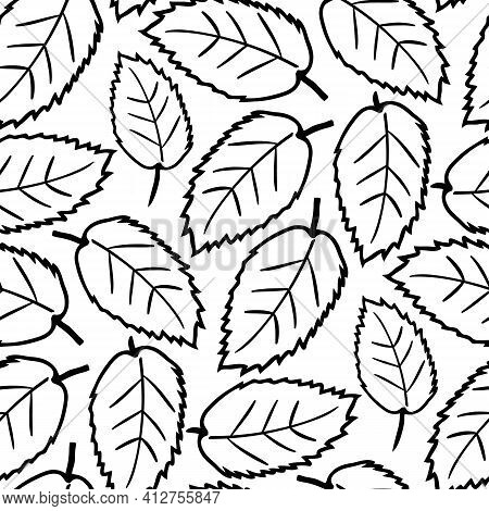Elm Leaf Seamless Vector Pattern Background. Hand Drawn Black Line Art Single Leaves On White Backdr