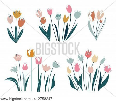 Tulips Set. Flowers In A Flat Style. Vector Isolated On White Background. Easter, Thanksgiving. Spri