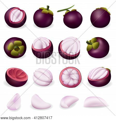 Mangosteen Icon. Cartoon Of Mangosteen Vector Icon For Web Design Isolated On White Background