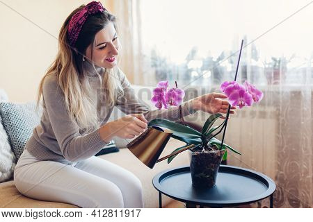 Woman Watering Blooming Orchid Mondriaan From Metal Watering Can. Girl Taking Care Of Home Plants An